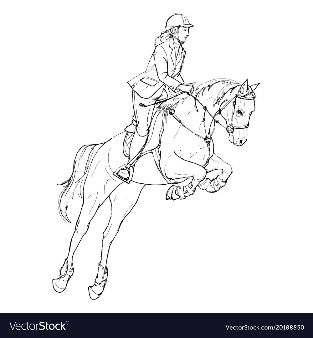 Female Rider Jumping Horse Outline Black And Vector Image Horse Coloring Pages Horse Drawings Horse Art Drawing