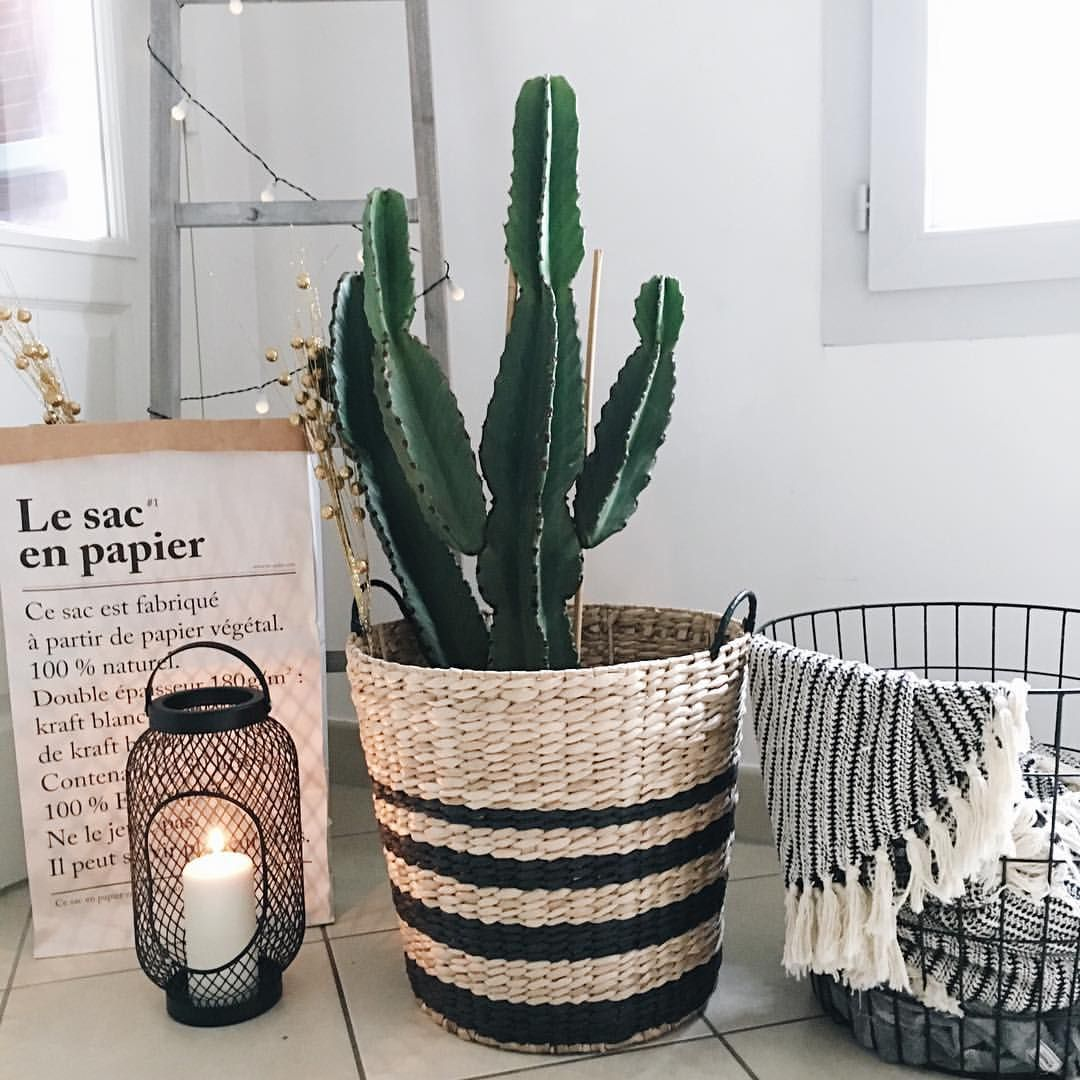 home inspiration cactus echelle en bois maisons du monde lanterne ikea light scandinavian. Black Bedroom Furniture Sets. Home Design Ideas