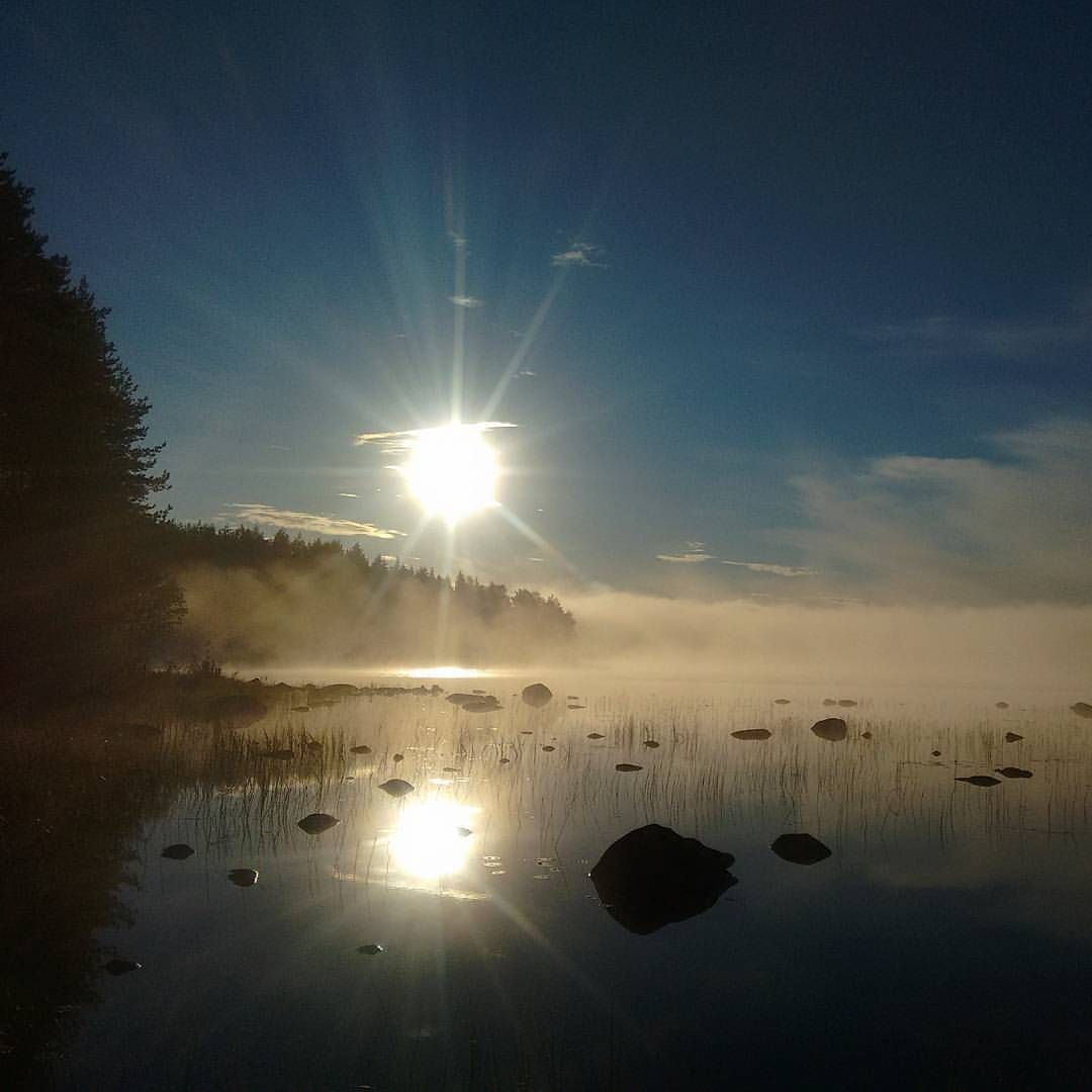 "800 tykkäystä, 12 kommenttia - Life is the best time :) (@jumonola) Instagramissa: ""💫 My foggy landscape now in the morning! Location: Korpijärvi Peaceful Thursday for you! #sun…"" #foggysunrise #sunrise #fig #foggy"