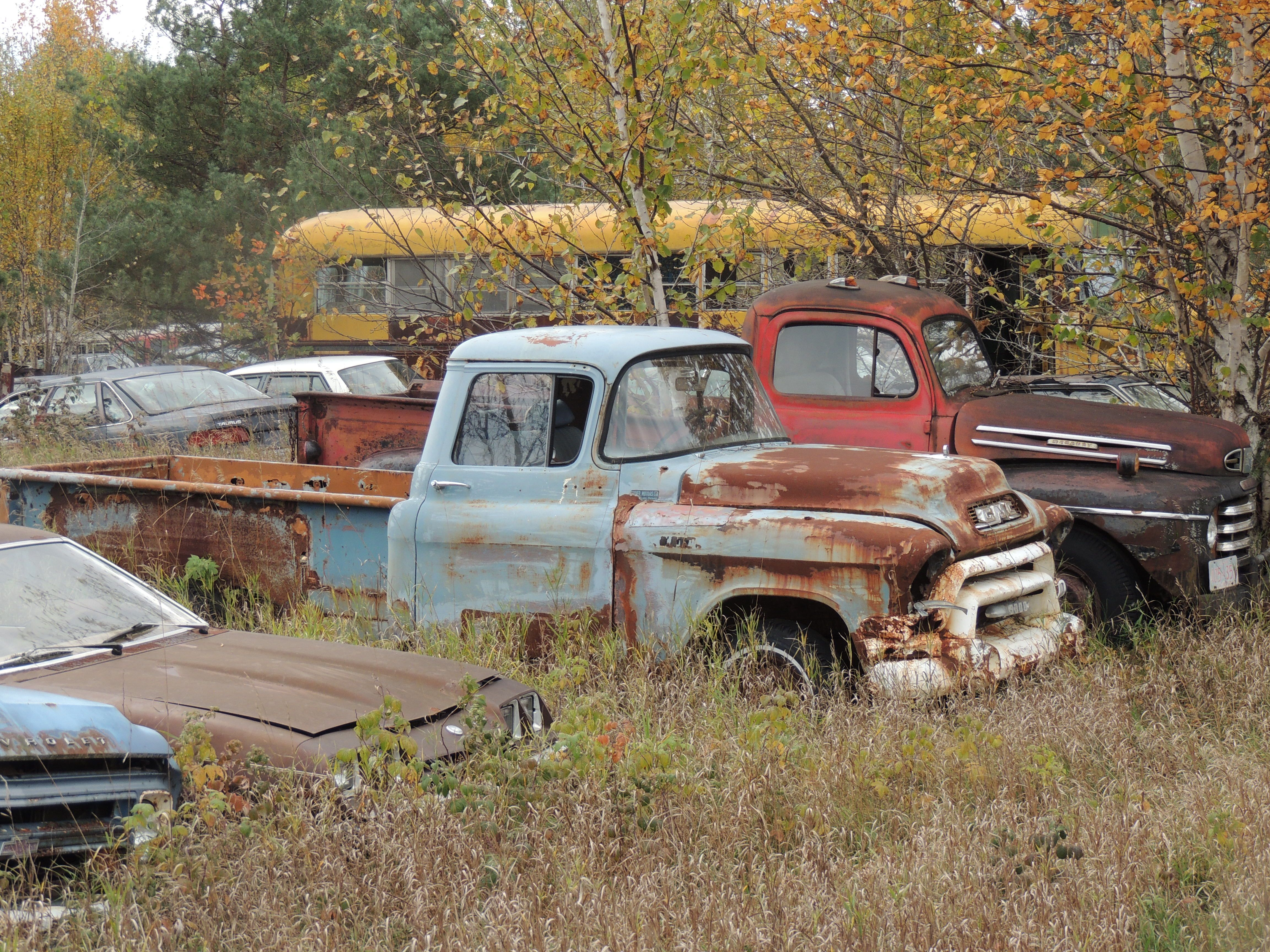 1957? GMC truck & early 50\'s Ford | cool old rides | Pinterest | GMC ...