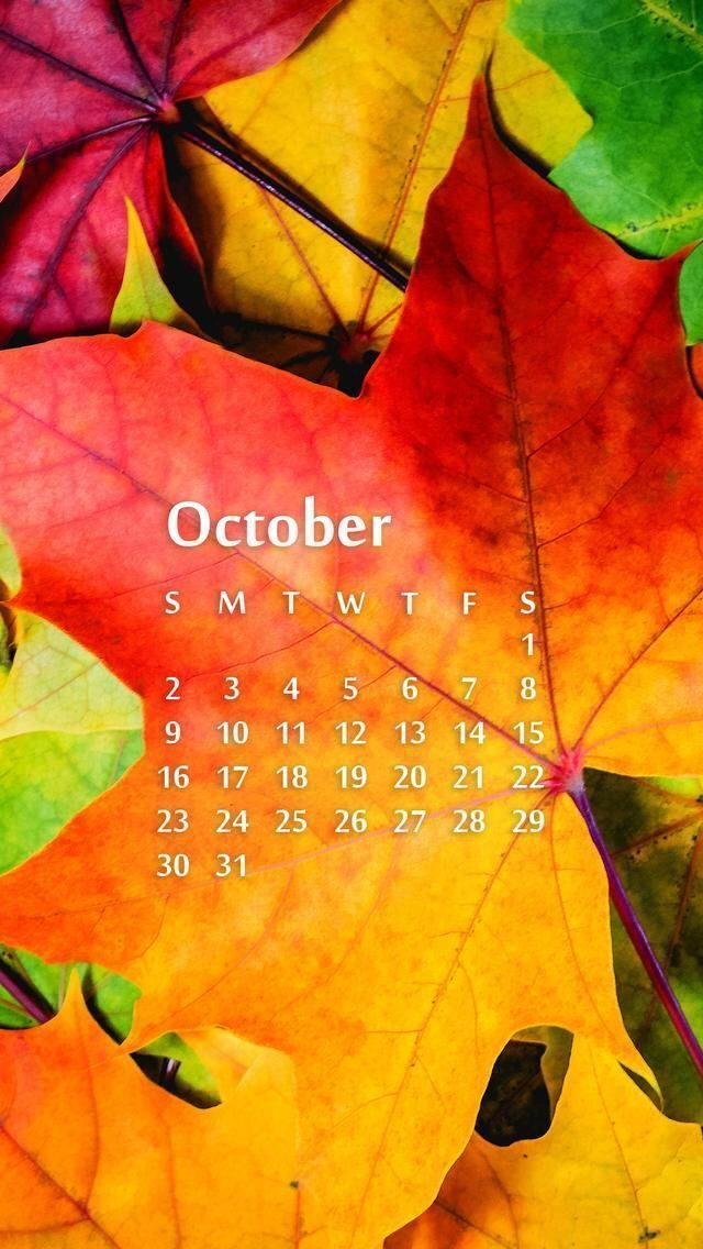 Wallpaper iPhone October 2016 calendar ⚪️ #octoberwallpaperiphone Wallpaper iPhone October 2016 calendar ⚪️ Best Pins ?  #Calendar #iPhone #october #Wallpaper #Autumn Aesthetic #Teenager Posts #Teenager Outfits #octoberwallpaperiphone Wallpaper iPhone October 2016 calendar ⚪️ #octoberwallpaperiphone Wallpaper iPhone October 2016 calendar ⚪️ Best Pins ?  #Calendar #iPhone #october #Wallpaper #Autumn Aesthetic #Teenager Posts #Teenager Outfits #octoberwallpaperiphone