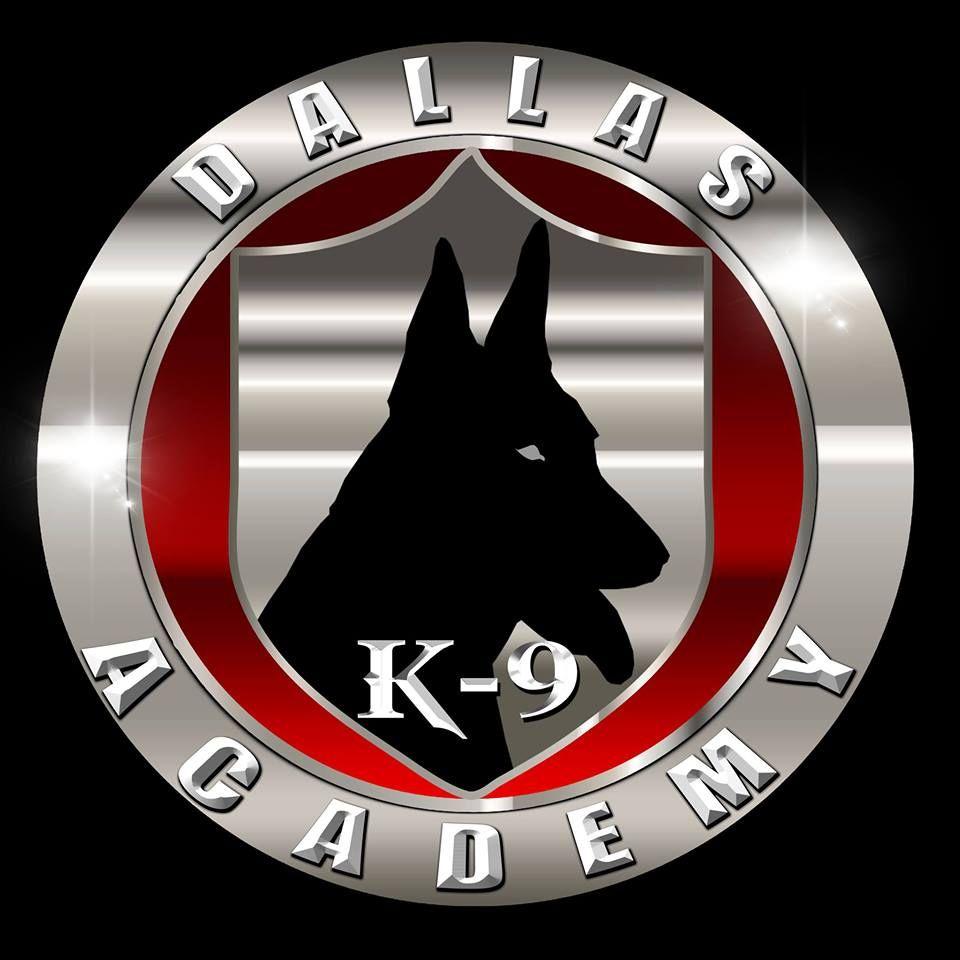 Dallas K 9 Academy Llc Dog Training Cane Corso Breeder Dallas Texas Cane Corso Cane Corso Breeders Dog Training