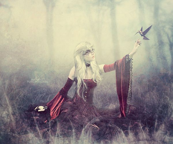 .: Enchanted Dream :. by ~Pure-Poison89 on deviantART