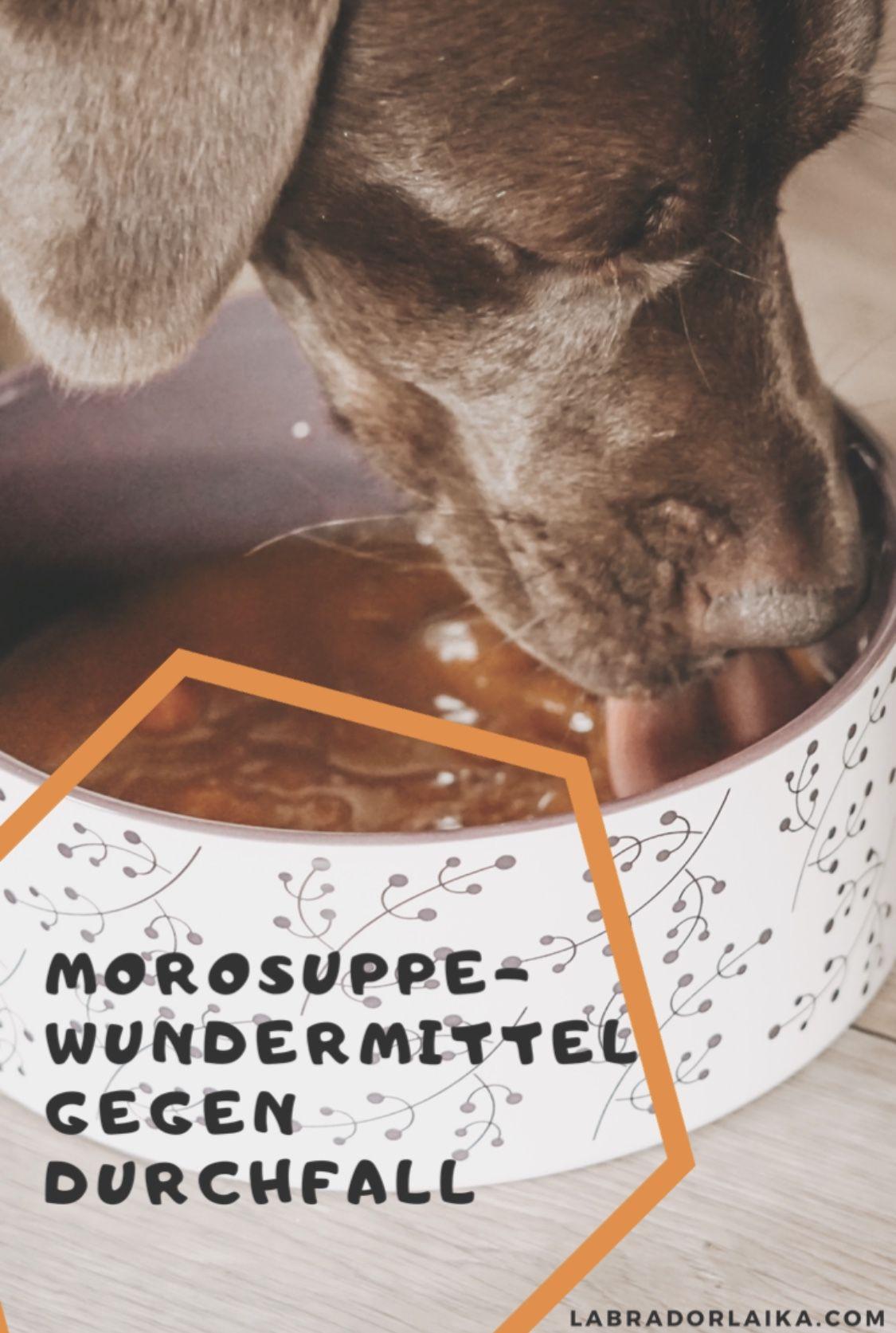 Morosuppe Als Wundermittel Gegen Durchfall Moro Suppe