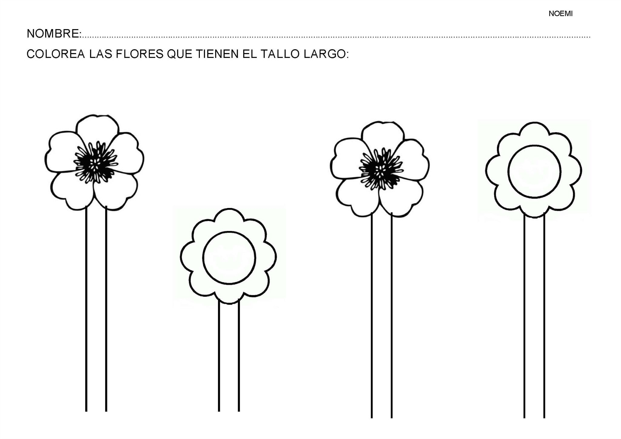 plantas, recursos educativos, flores, arboles, naturaleza | TANULÁS ...