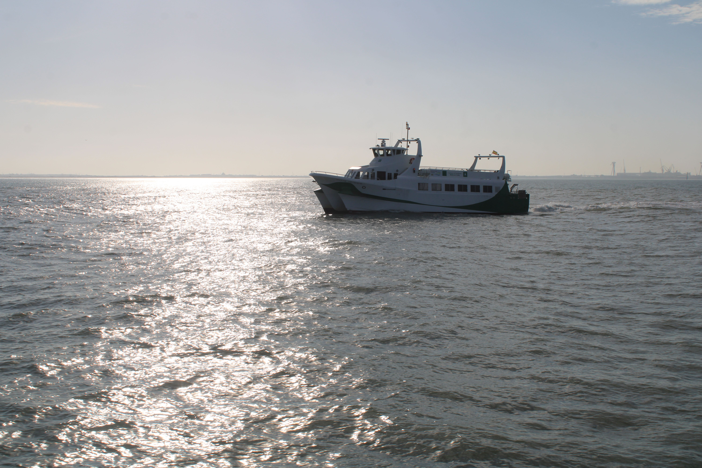 fotografía del catamarán en mitad del trayecto de la bahía