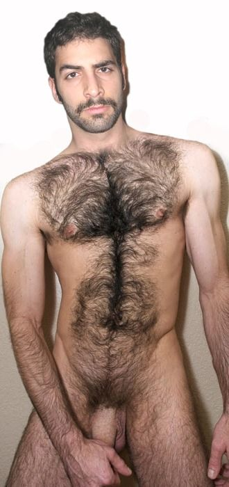 Pictures Of Naked Hairy Men