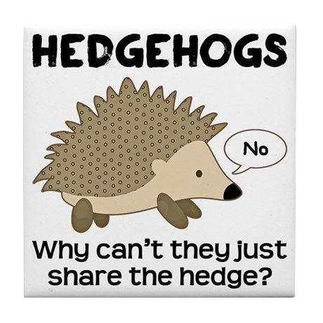 1aa9b42b5 Funny Pun: Hedgehogs - why can't they just share the hedge? Animal Humor