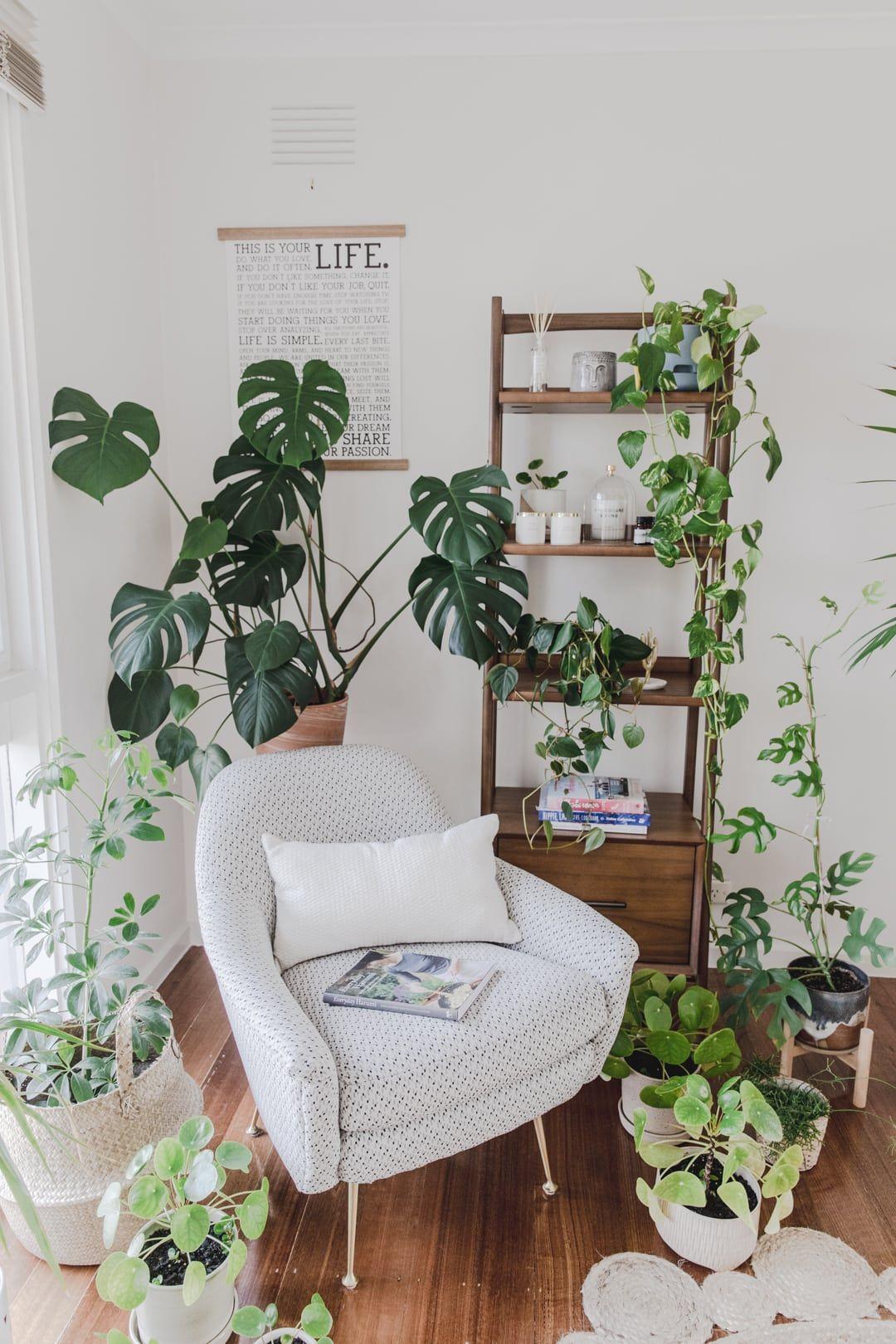 Our New Home Reading Corner Plant Corner Tour Connie And Luna Living Room Corner Corner Plant Living Room Plants #plants #for #living #room #corner
