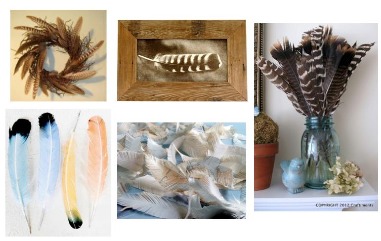 Feather Decorating Ideas  sc 1 st  Pinterest & Feather Decorating Ideas | Crafts/Gifts | Pinterest | Feathers ...