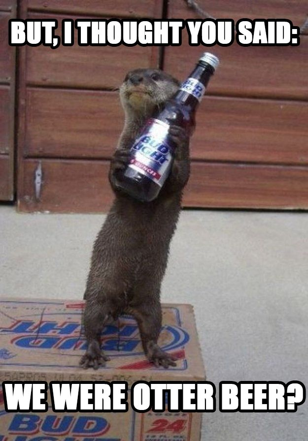 But, I thought you said we were otter beer?