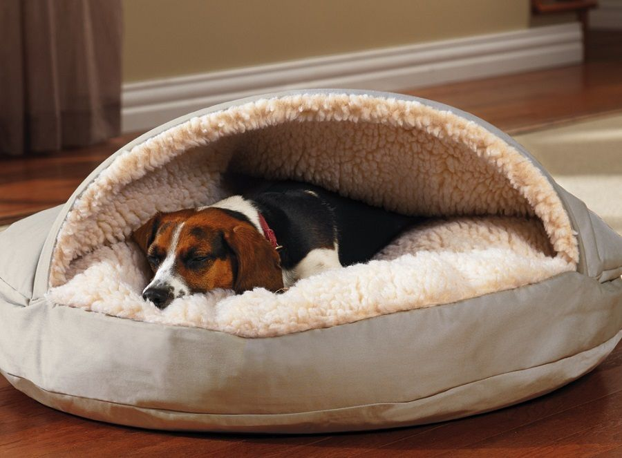 Diy Dog Bed Project How To Make A Homemade Dog Bed Xlarge Dog