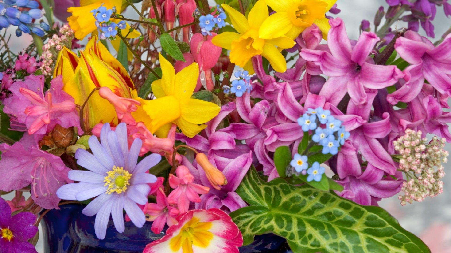 Happy Spring Day Background HD Wallpaper Of Event - Colorful flower garden background