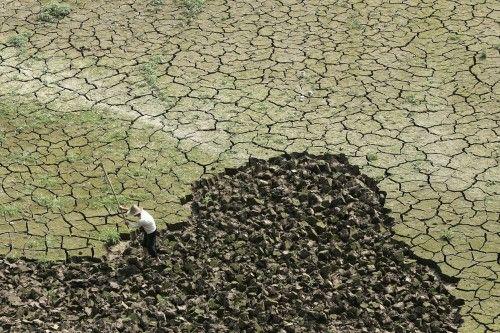 El Niño pourrait bouleverser l'équilibre du monde vers le milieu de 2014 - Environnement - Actualité - LeVif.be
