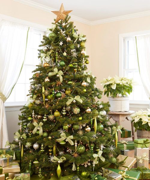 Christmas Traditions Trees Green