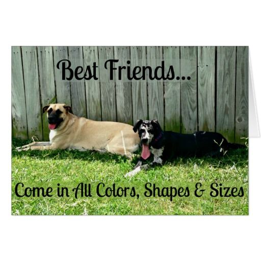 Best Friends Greeting Card For Big Dog Lovers Zazzle Com Big Dogs Dog Lovers Dogs