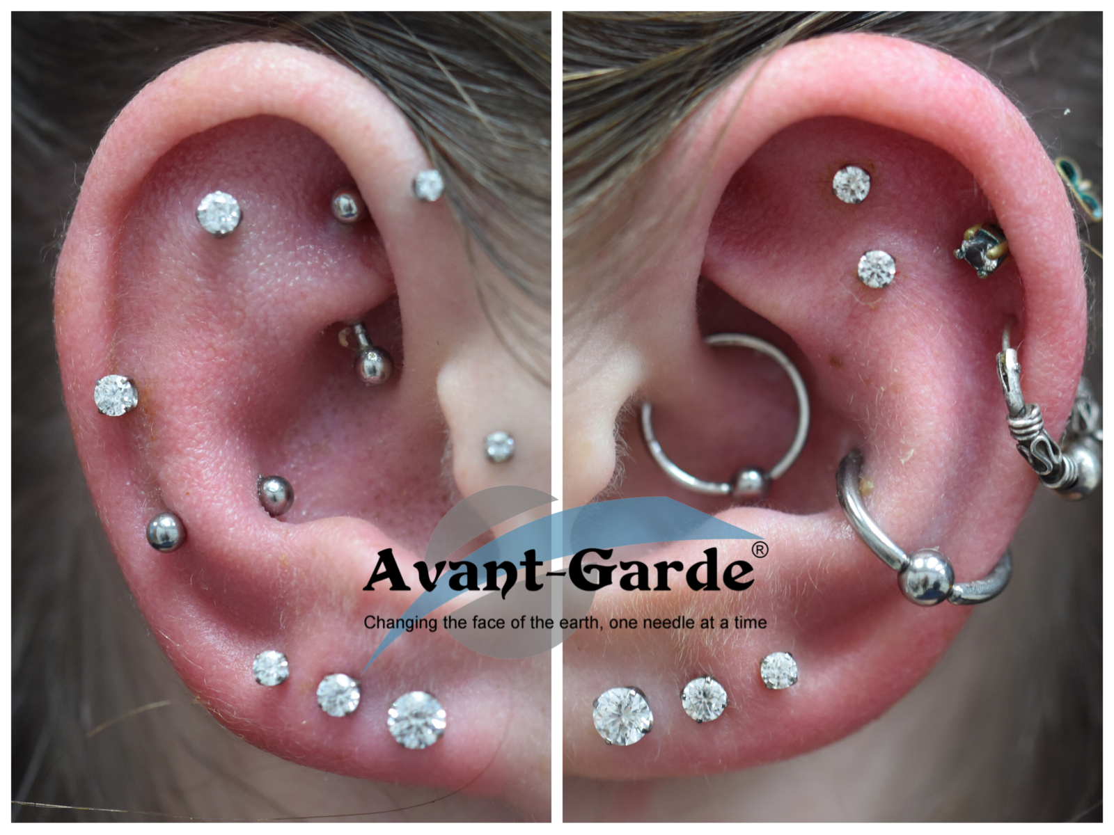 Tons Of Amazing Piercings Done Here With Us At Avant Garde Such A