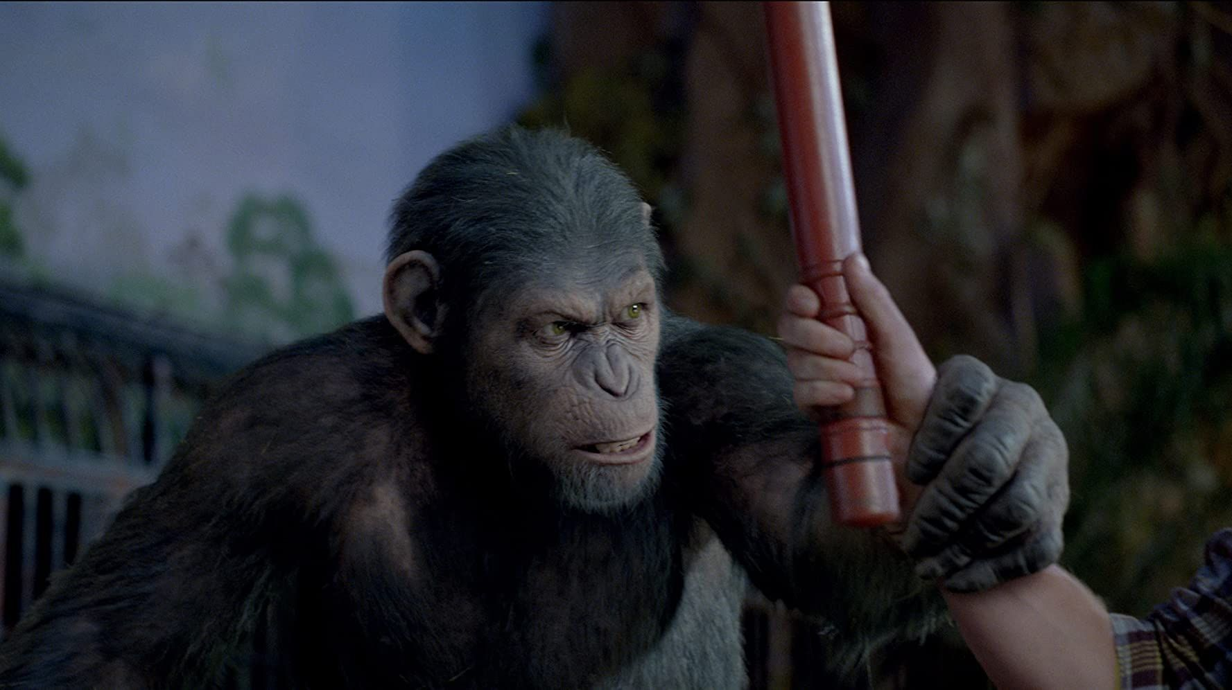 Rise Of The Planet Of The Apes 2011 In 2020 Planet Of The Apes Dawn Of The Planet Apes