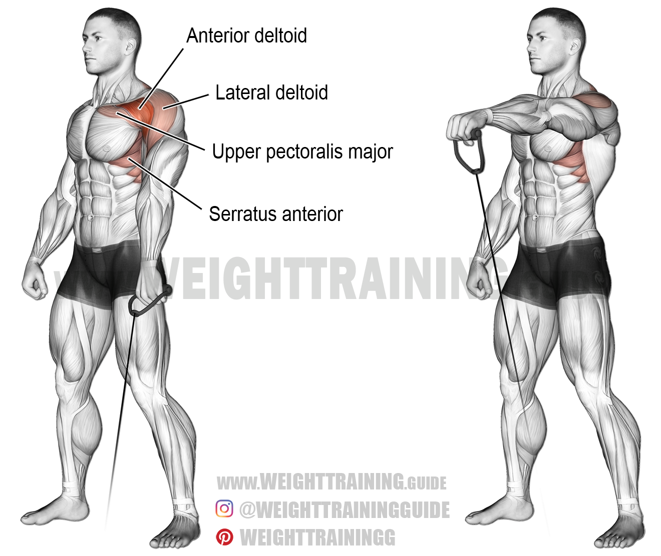 Cable One Arm Front Raise
