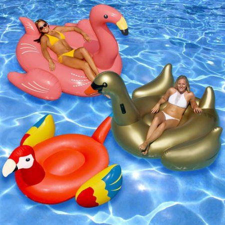 Swimline Giant Bird Floats for the Swimming Pool, 3-Pack, Multicolor