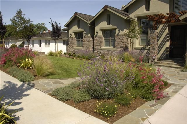 Drought tolerant landscaping california drought tolerant for Drought tolerant yard