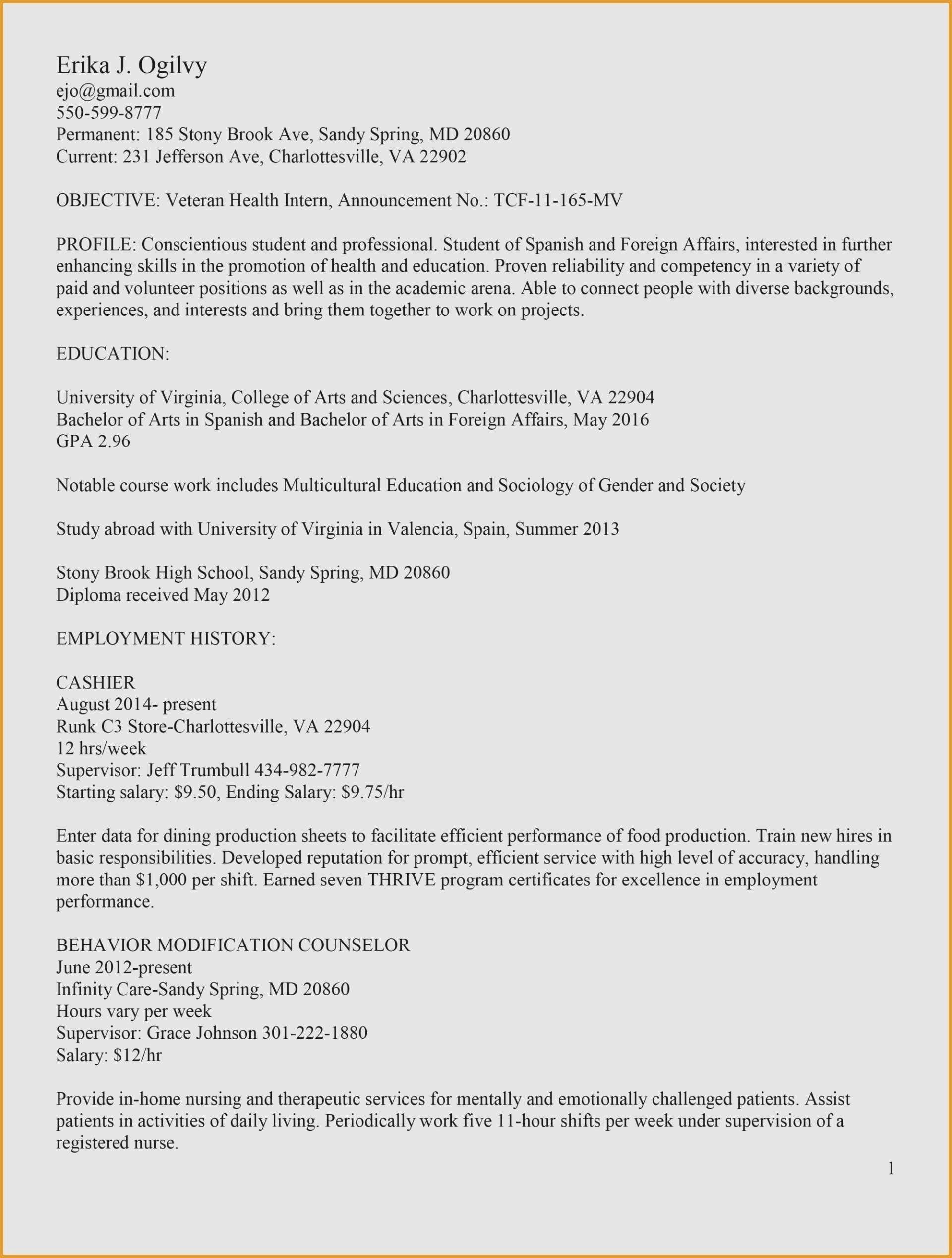 Functional Resume Template Google Docs Free