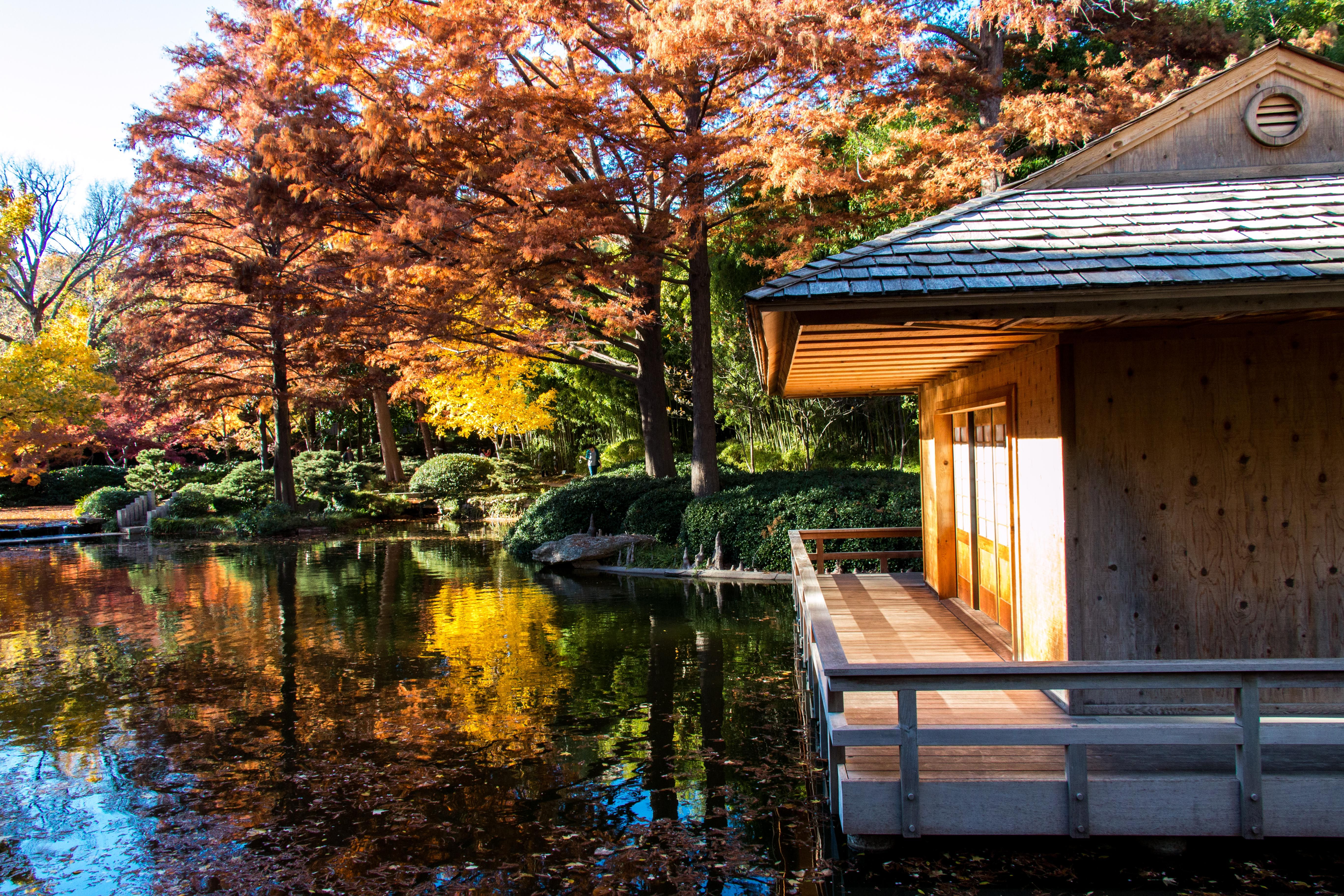 Japanese Gardens, Fort Worth, TX. Photo by Don Beene. | Fort Worth ...