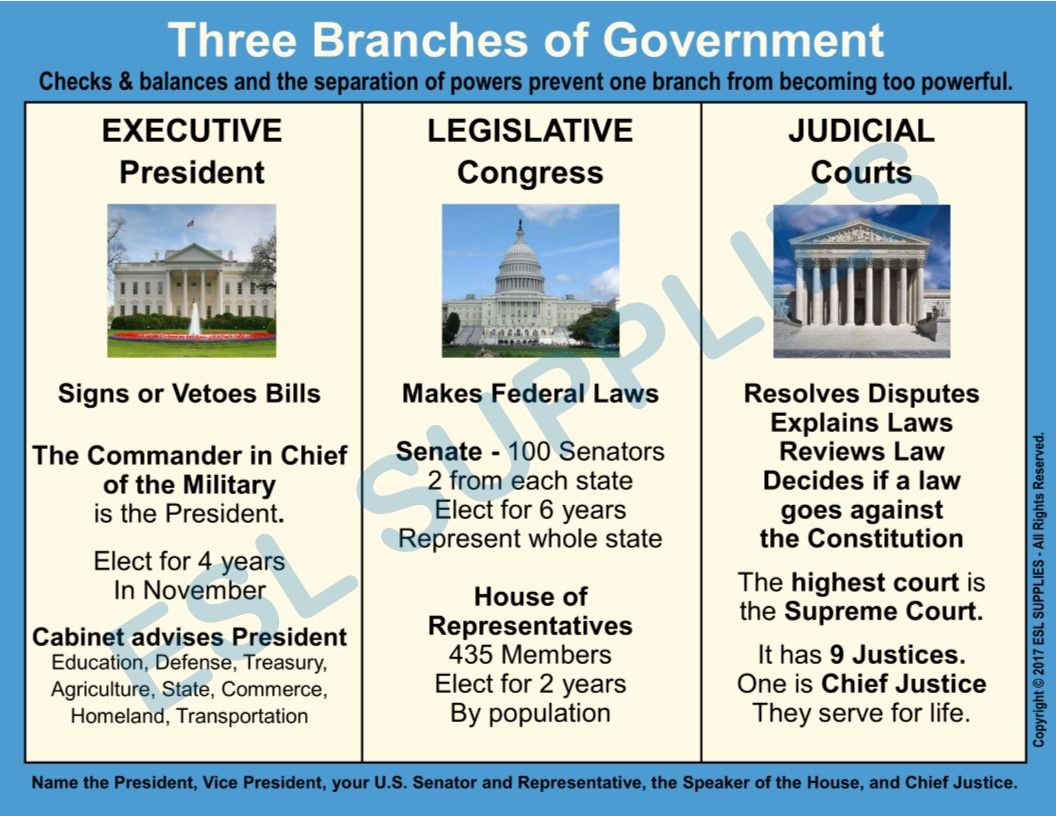 three branches u.s. government essay Running head:-branches of government the most important branch of the unites states is the executive branch, which makes sure that the laws of the us are obeyed the system that was put into place to perform these tasks was called checks and balances.