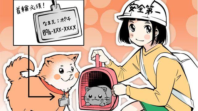 災害時には犬猫ペットと同行避難 役立つ防災グッツなど 動物漫画 のアイキャッチ ペット 猫 ペット 猫