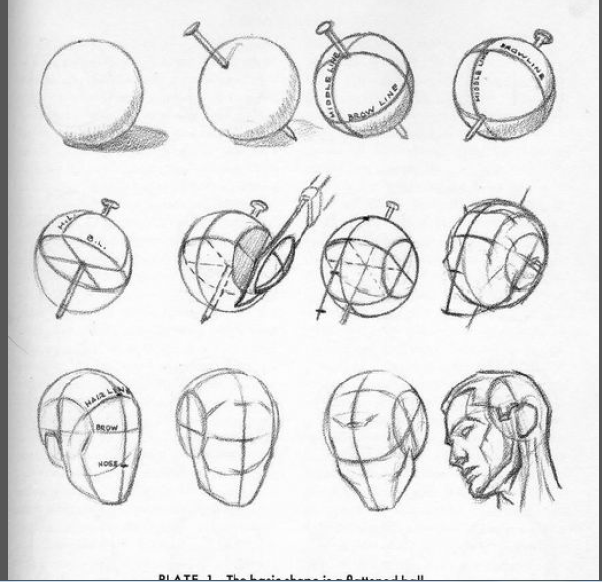Facial construction heads