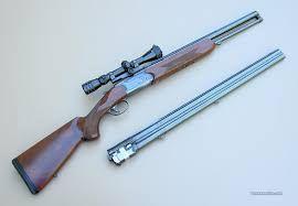 Картинки по запросу combo rifle shotgun