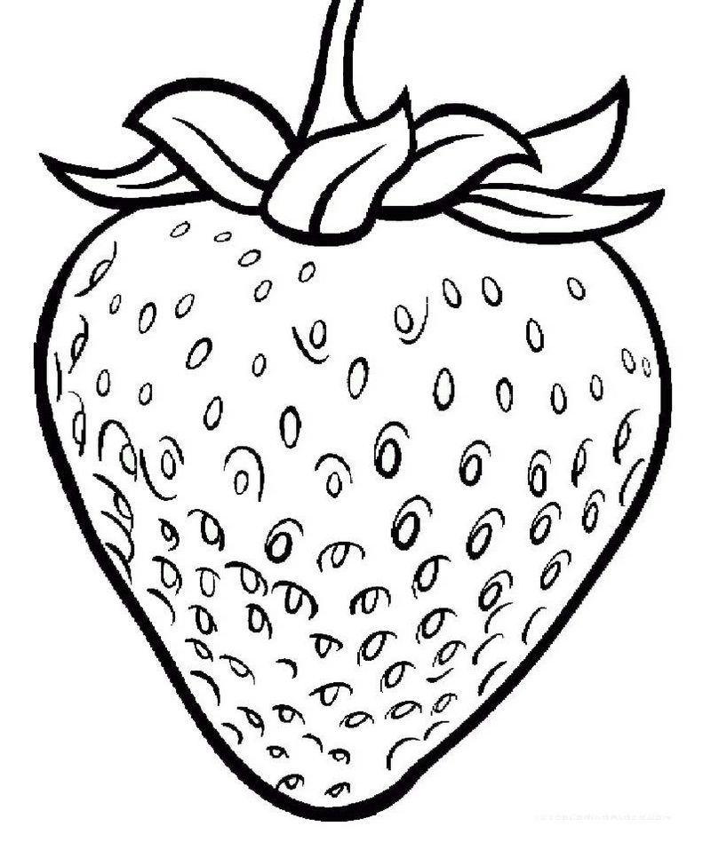 - One Large Strawberry Coloring Page Printable Fruit Coloring Pages, Coloring  Books, Strawberry Drawing