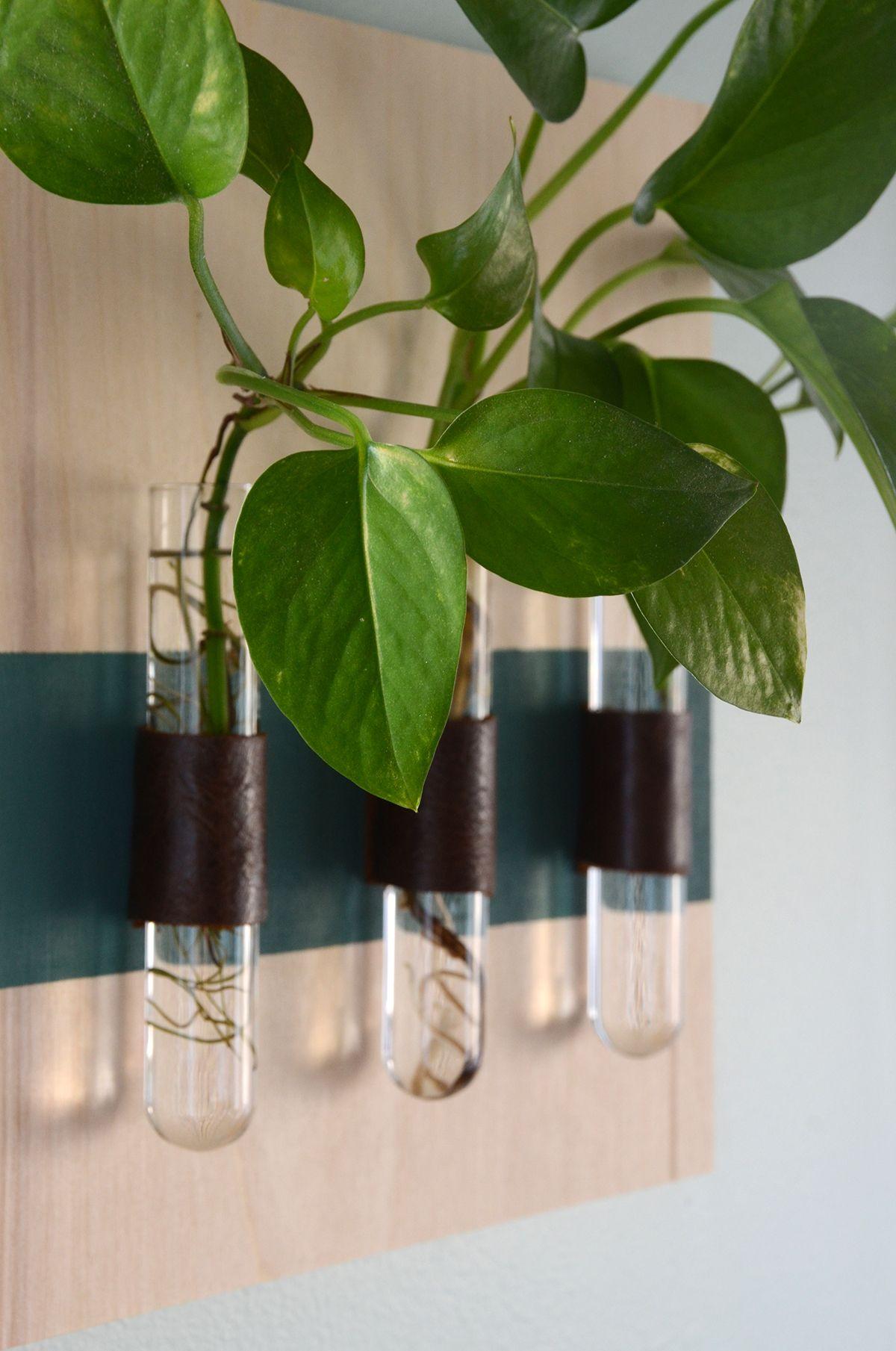 Hängende Glasvase mit Holztablett Hydrokultur Pflanzen Blumenvase  Hochzeitsdeko