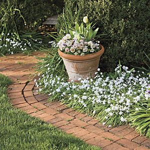 Beauty Takes Flight | Smaller Paths | SouthernLiving.com  Each walk or vista ends in a focal point, usually a fountain or statue. Camellias, azaleas, bulbs, flowering cherries, wildflowers, roses, hydrangeas, and wisterias bestow bountiful color.
