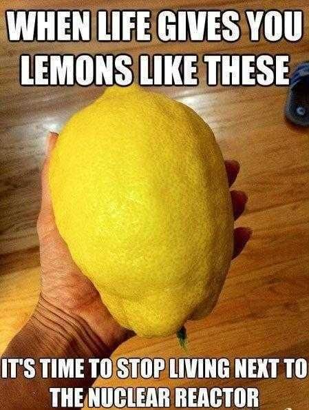 Pin By Nick Callier On Life Funny Captions Morning Humor Bones Funny