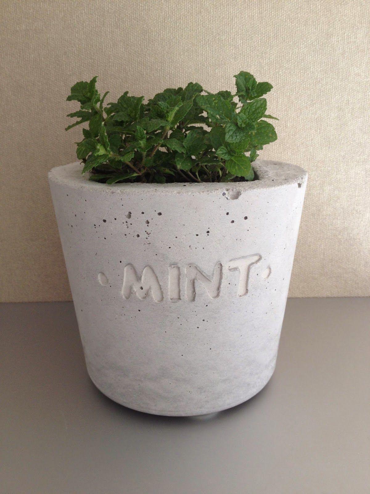 wohnbrise: kräutertopf, beton topf, mint, | diy: concrete & cement