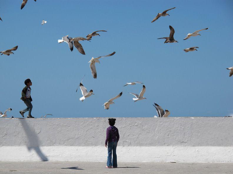 Curious Kids - , Essaouira