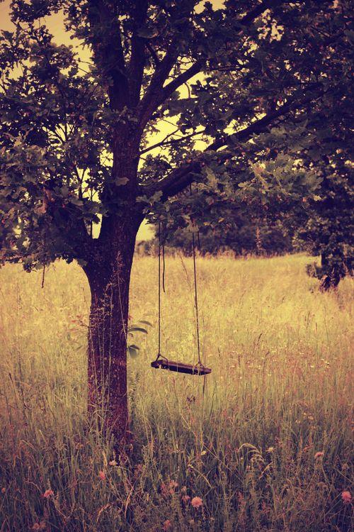 Swinging from a broken tree lyrics