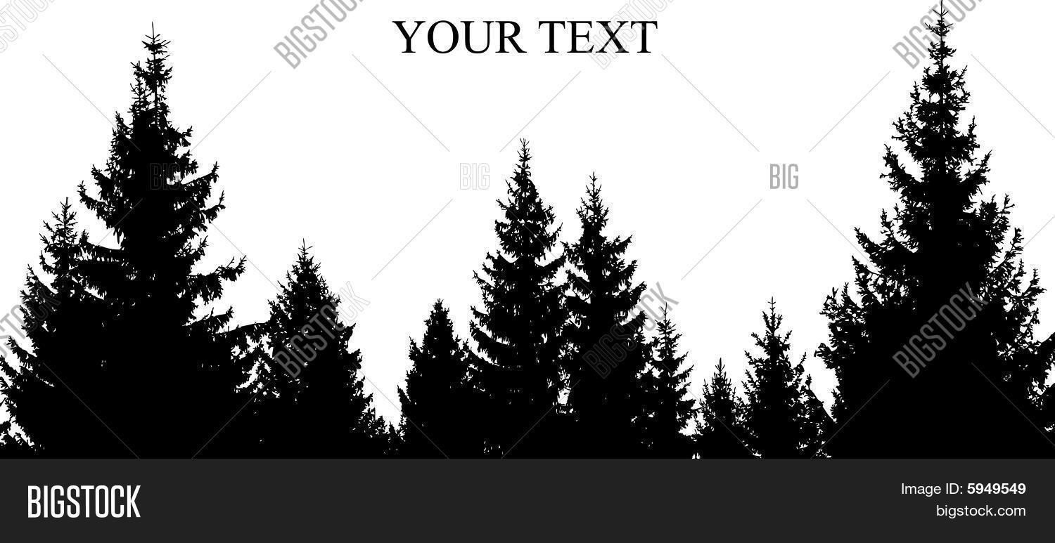 Tree Silhouette Images, Stock Photos & Illustrations