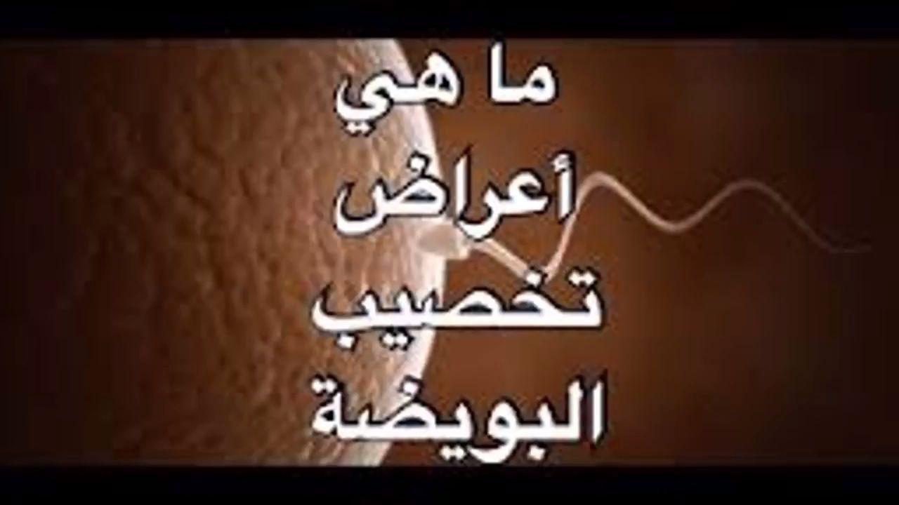 ماهي اعراض تخصيب البويضه ثقف نفسك Calligraphy Day Arabic Calligraphy