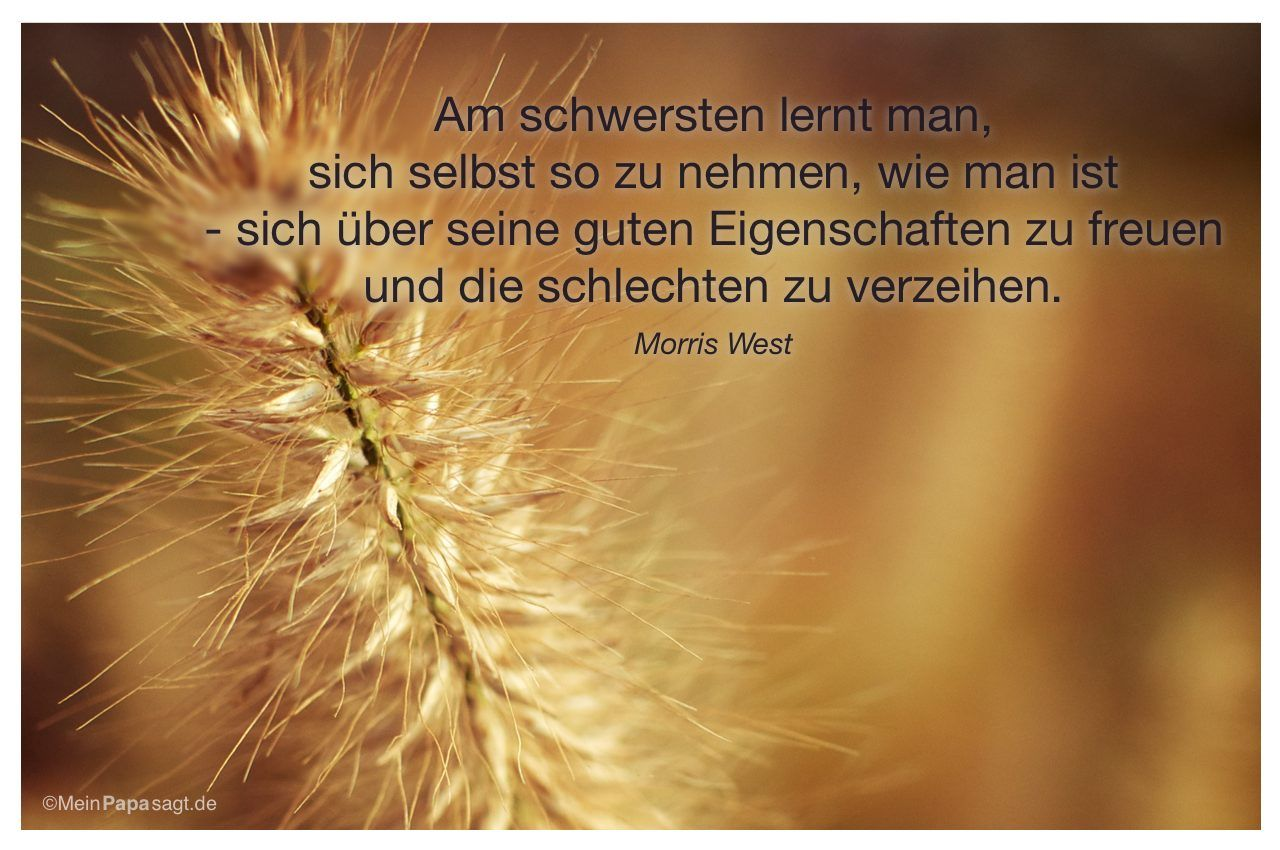 1000+ images about zitate/spruche on pinterest | zitate, osho and