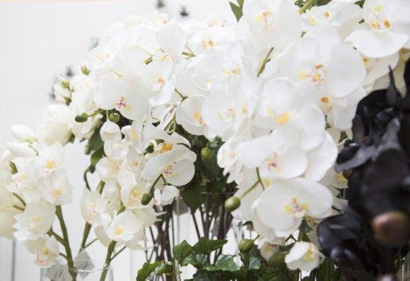 Phalaenopsis, orchidées, fleurs artificielles blanches, Green Shop ...