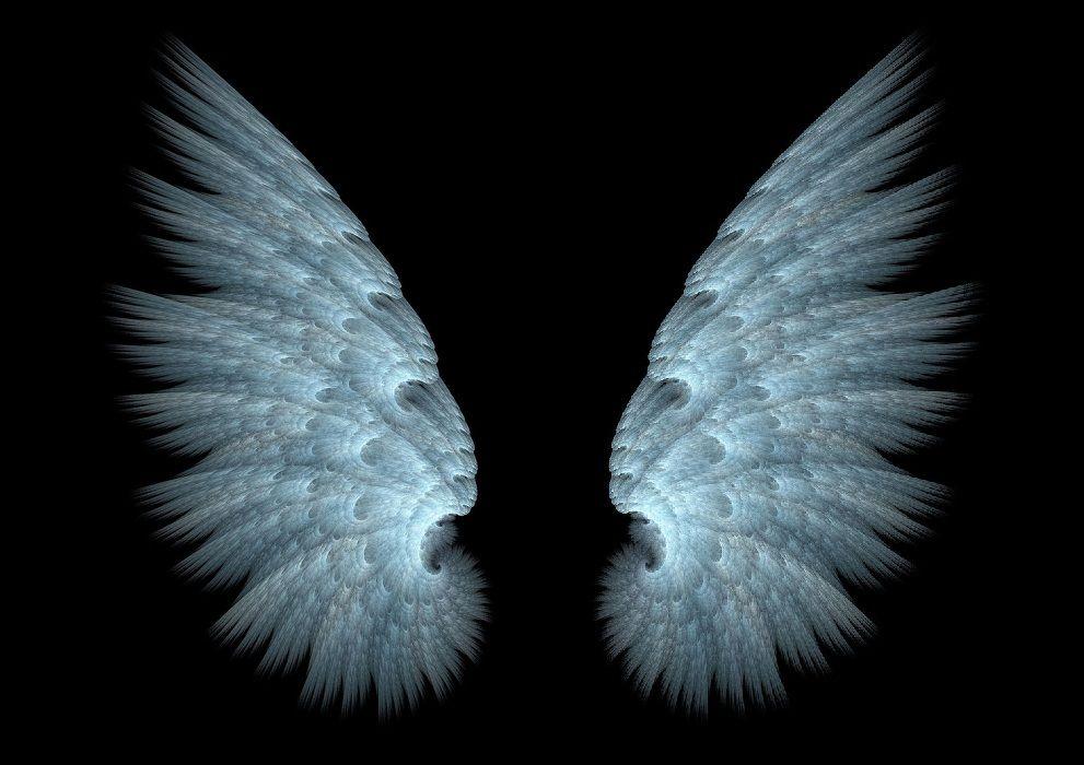 сразу крылья ангела картинка в хорошем качестве утверждают