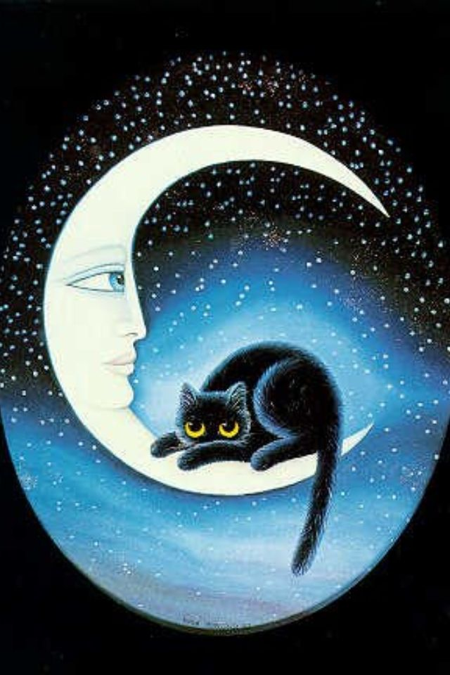 Night Cat Productions: Pin By Leann Frank On Fun Pics