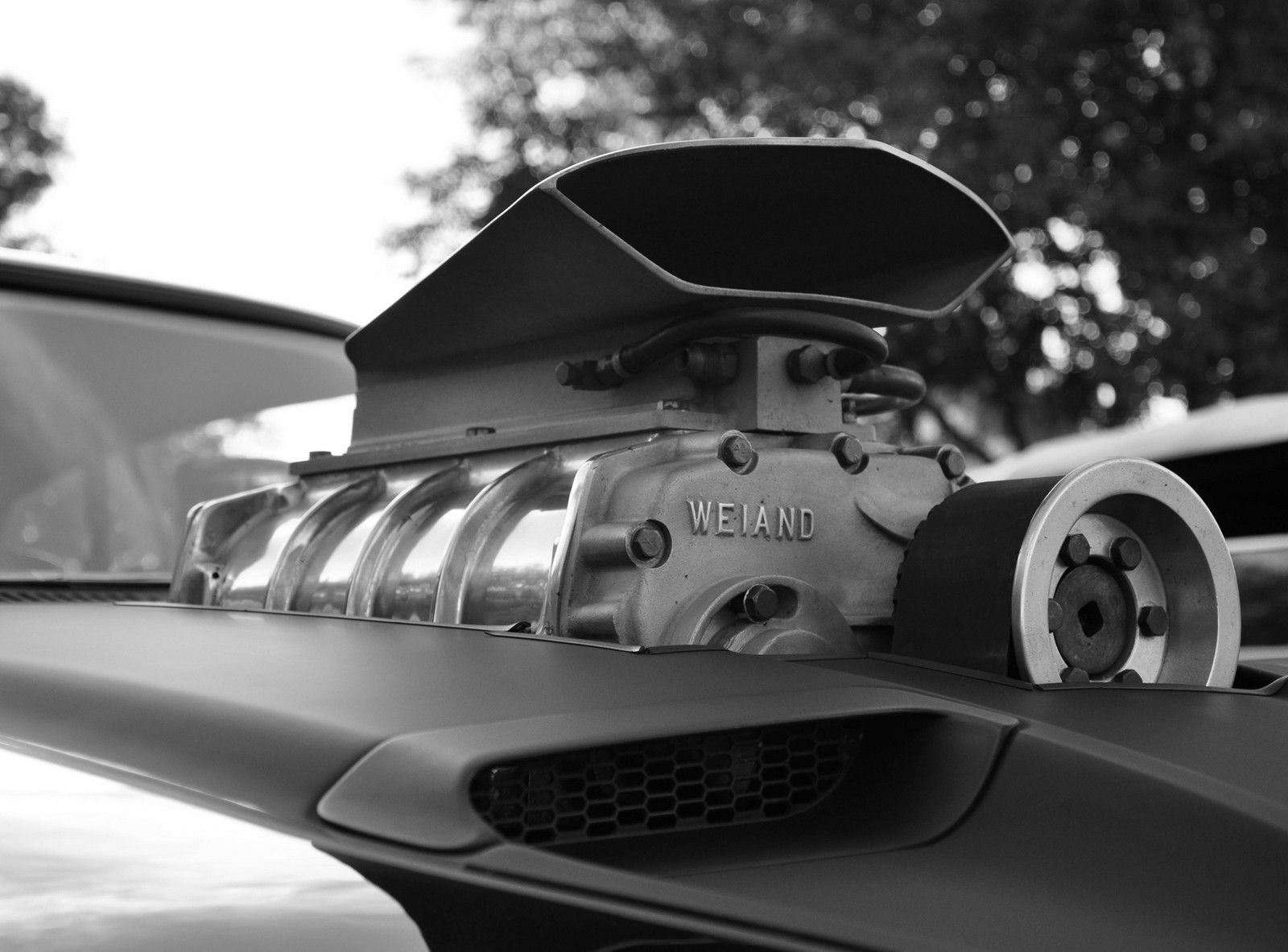 Beautiful picture The supercharger is made by Weiand