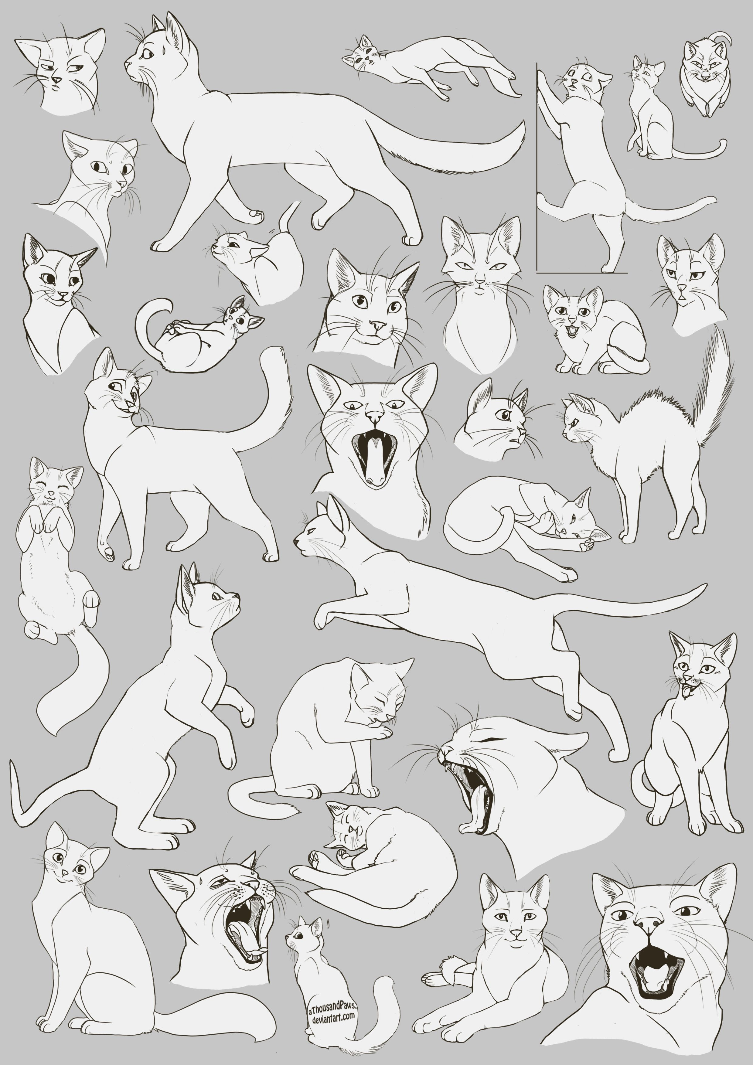 Free Art: Cats Cats Cats! by *aThousandPaws on deviantART | Drawing ...