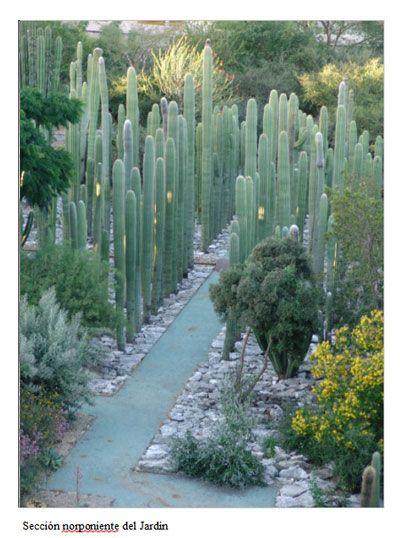 Jard n etnobot nico de oaxaca oaxaca trip planning for Jardin etnobotanico oaxaca