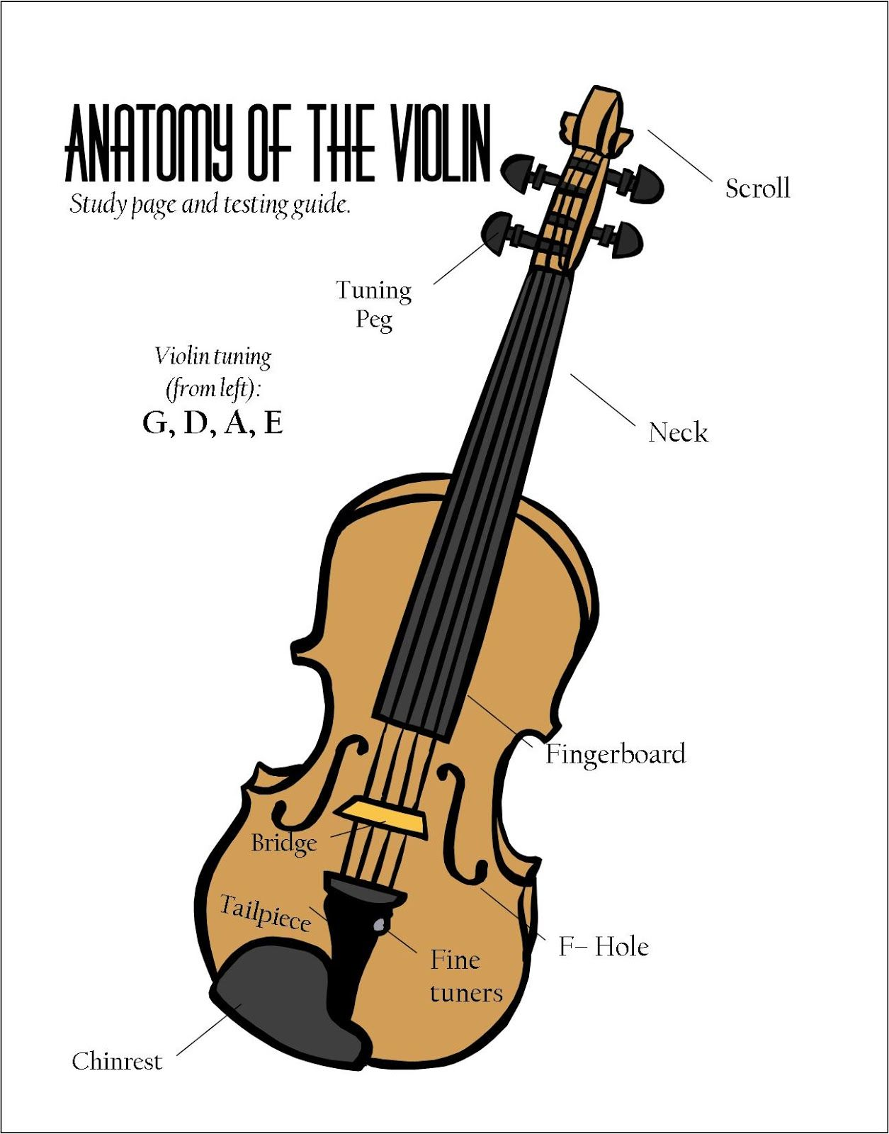 Parts Of The Violin Poster