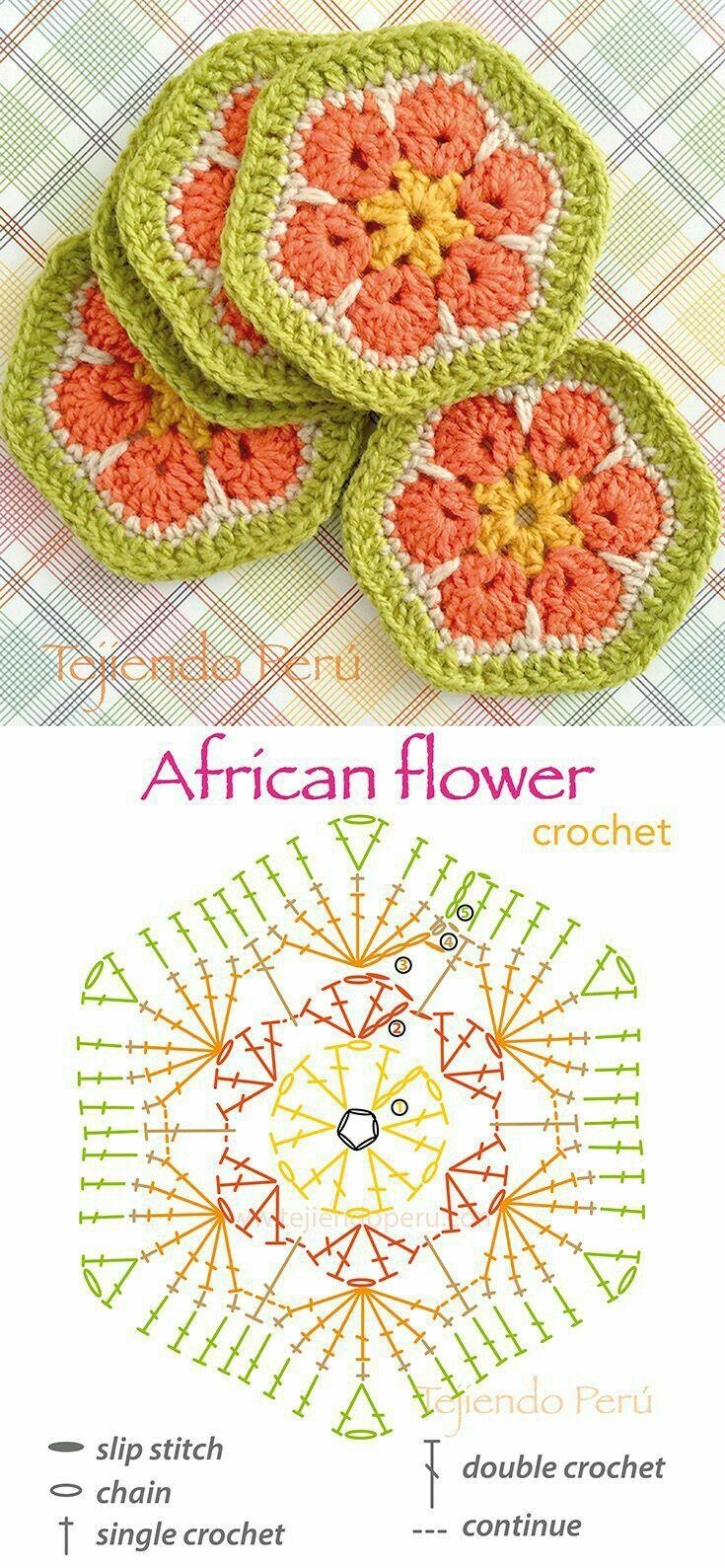 African flower | instagram | Pinterest