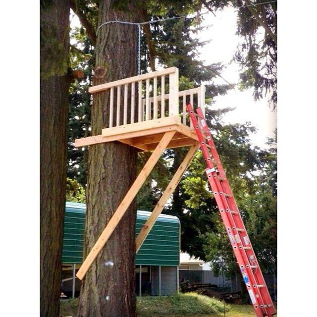 backyardziplines's photo on SnapWidget | Backyard, Zip ...